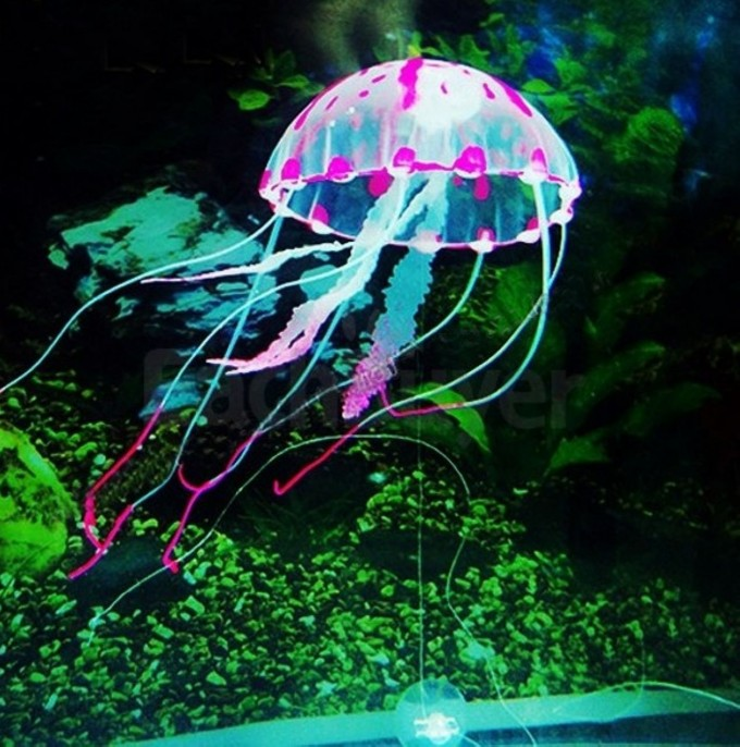 floating-jellyfish-glowing-lights-swimming-pool